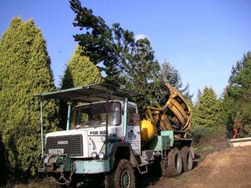 specialised tree moving machine