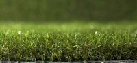 Aritificial Rye-Grass | 38mm Pile Depth