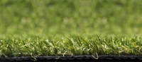 Aritificial Garden Grass | 20mm Pile Depth