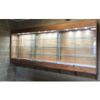 Wall Trophy Cabinets For Corporate Showrooms