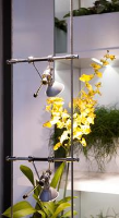 Cable Suspended Lighting