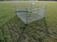 Sheep Hurdles 10 X 5Ft Long Galv Steel New
