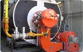 BWR series Fire Tube Steam Boilers