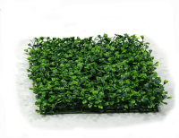 Artificial Topiary Boxwood Hedging Panels - 25cm x 25cm Boxwood Panel with seeds