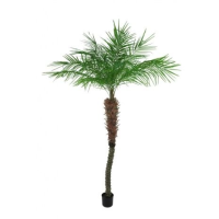 Artificial Pheonix Potted Palm Tree - 210cm, Green