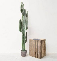 Artificial Cactus Plant with Brown Pot - 157.5cm, Green