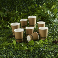 Double Wall Paper Cups For Outdoor Events