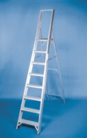 Stainless Steel Euro Platform Steps For Commercial Industries