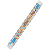 300mm Scale Ruler