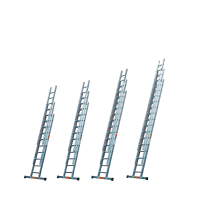 Professional Extension Ladders