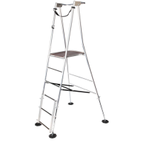 Henchman Hi-Step Platform Garden Ladders