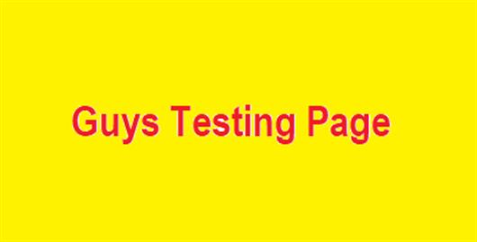 Guy's Testing Page