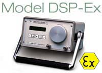 Model DSP-Ex Data Sheet