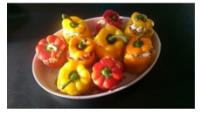 COUSCOUS STUFFED PEPPERS