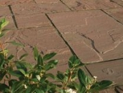 Hardstone Natural Indian Sandstone Paving - Chocolate (Brown)