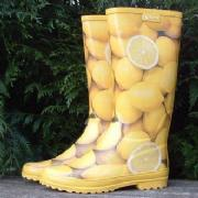 Ladies Citron Aigle Wellington Boots