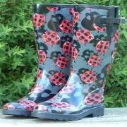 Ladies Ladybirds Funky Festival Wellies