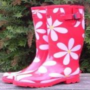 Ladies Red Daisies Funky Festival Wellies