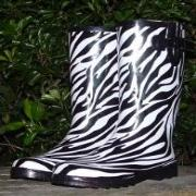 Ladies New Zebras Shoetree Shorter Length Wellies