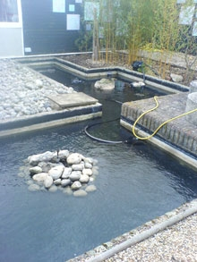 Pond maintenance cambridge pond maintenance cambridge for Pond maintenance companies